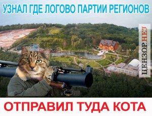 Днепропетровский билборд с «бабушкой и котом» - новый символ борьбы с режимом в Украине!!!